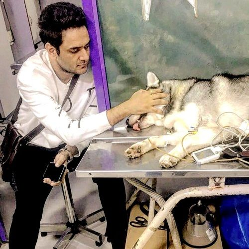 Vikas Gupta with his dog, Pikachu