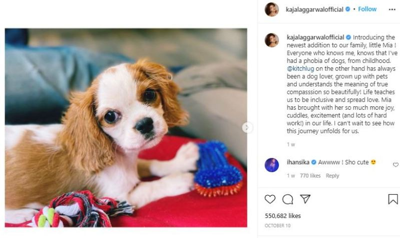 Kajal Aggarwal introducing her puppy, Mia, as her first child on Instagram