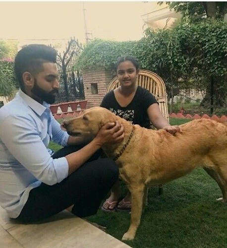 Parmish Verma loves dogs