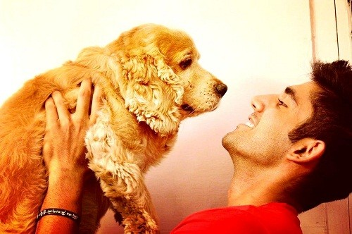Varun Sood loves dogs