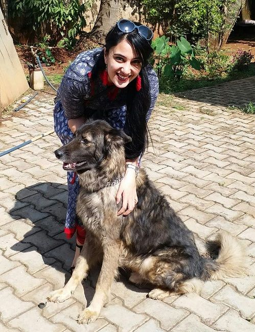 Sai Lokur Dog Lover