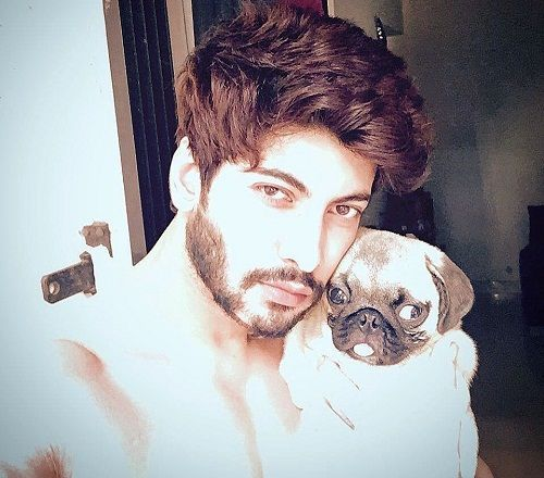 Abhimanyu Chaudhary loves dogs