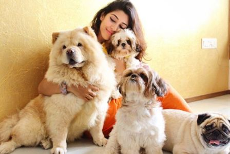 Sonarika Bhadoria with her dogs