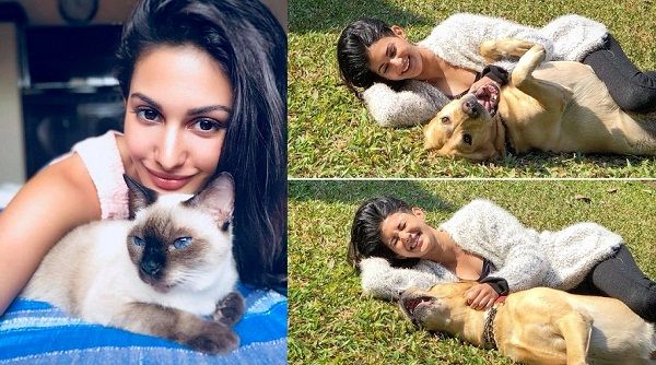 Amyra Dastur loves animals