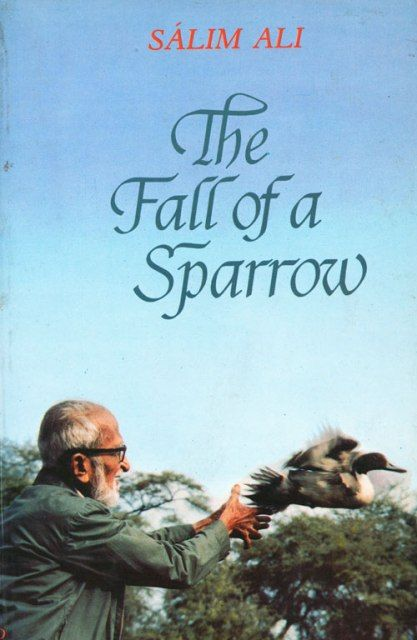 Cover of The Fall of Sparrow