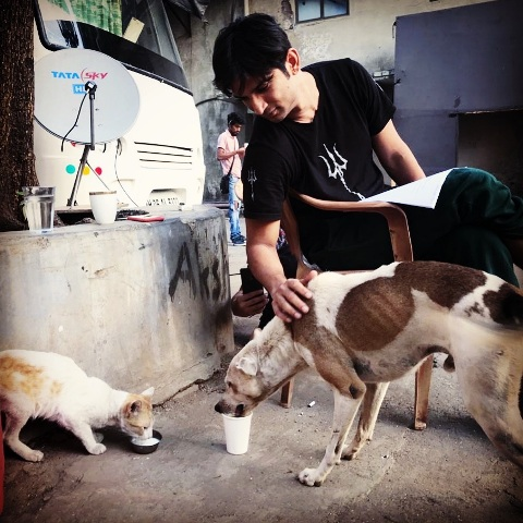 Sushant Rajput loves dogs