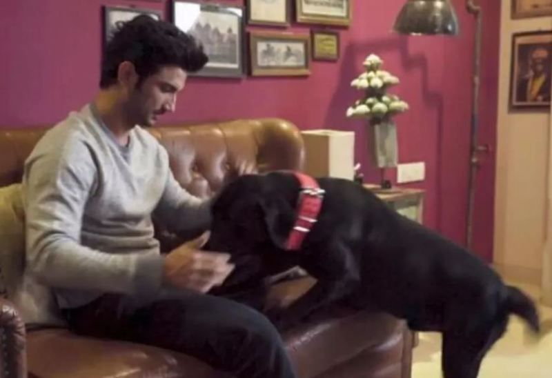 Sushant Singh Rajput With His Pet Dog Fudge