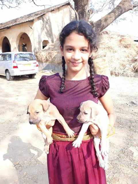 Syna Anand loves dogs
