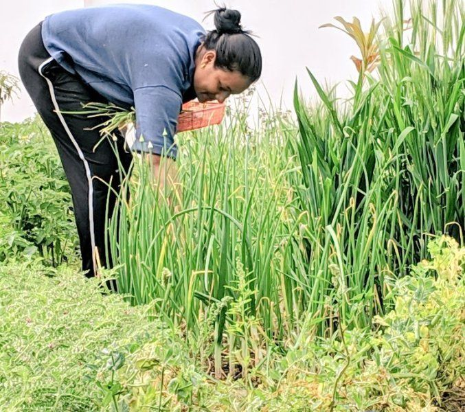 Arunima Sinha Doing Gardening