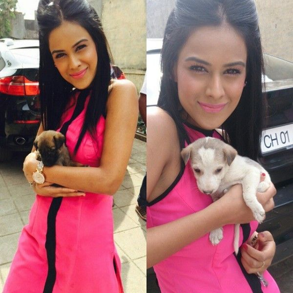 Nia Sharma with her pet dogs