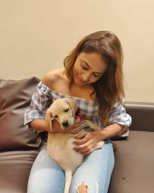 Ridhima Pathak loves dogs