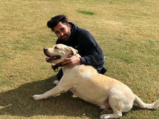 Sharry Mann loves dogs