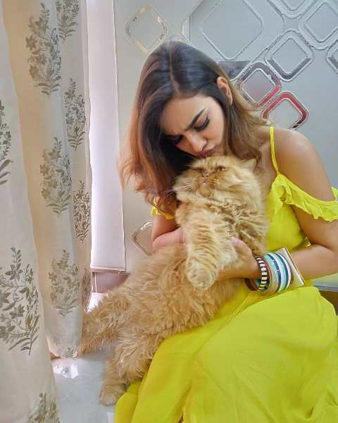 Priyanka Purohit with her pet cat
