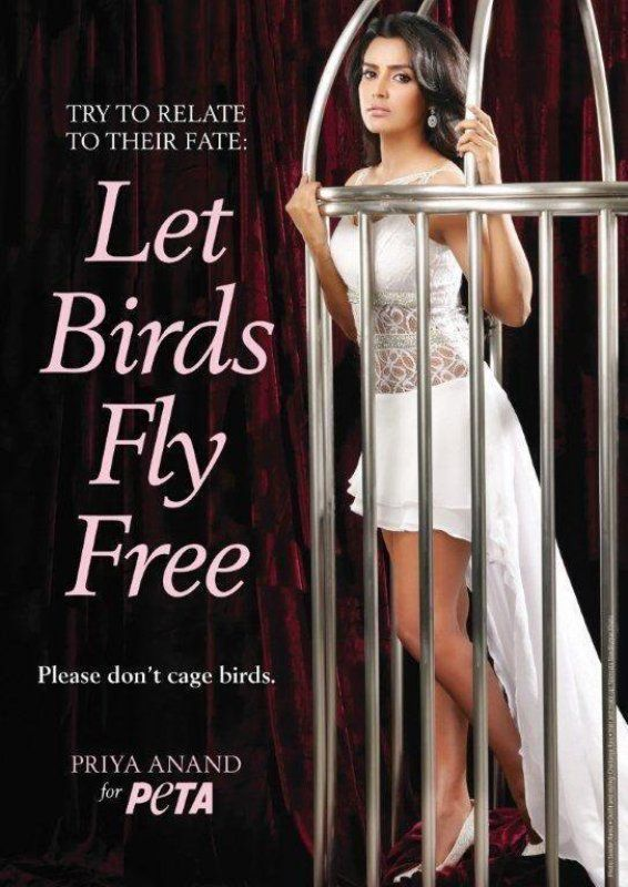 Priya Anand on as brand ambassador of PETA