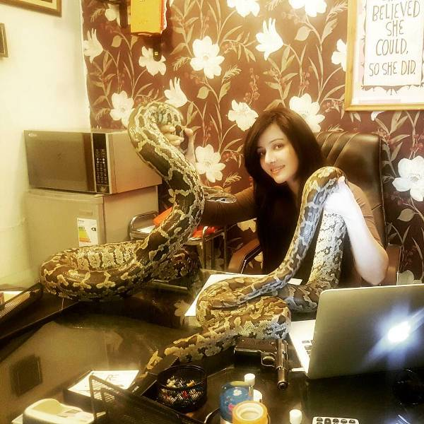 Rabi Pirzada with Her Pet Snake- Bhoolu and Tiger