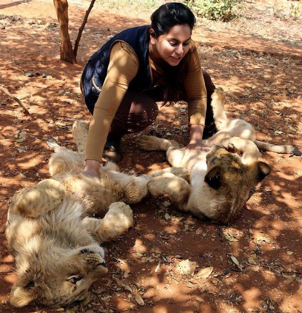 Upasana Kamineni playing with lions