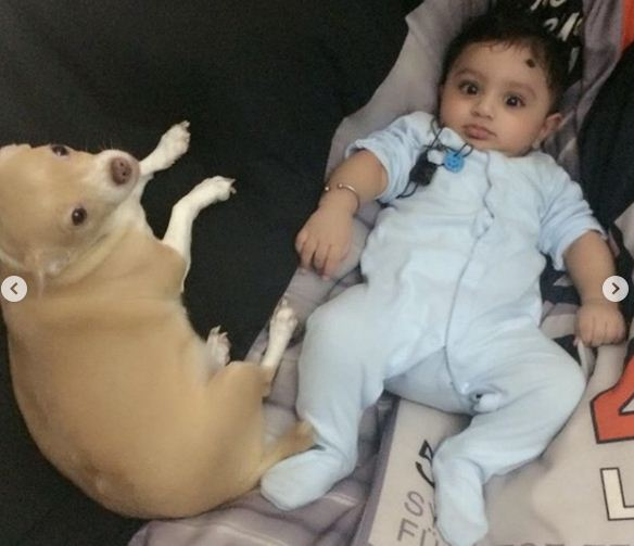 Mathira's pet dog and her son