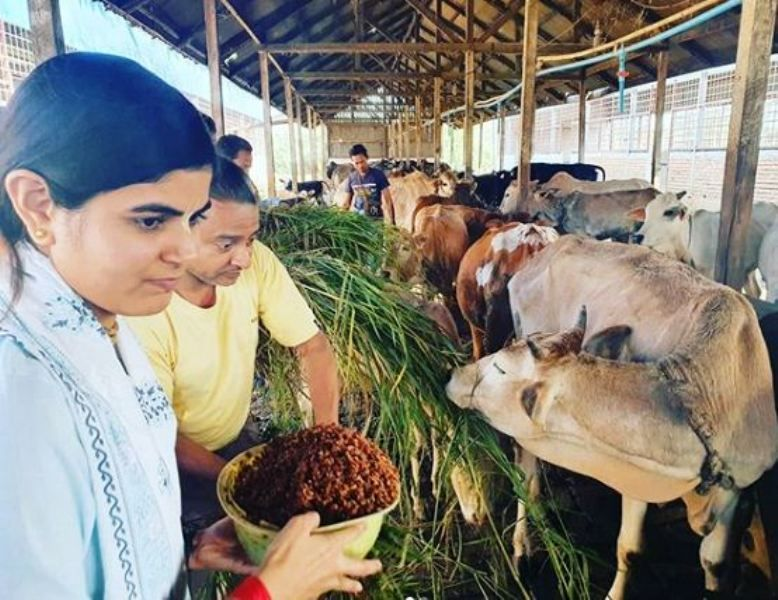Devi Chitralekha in a Cow Shelter