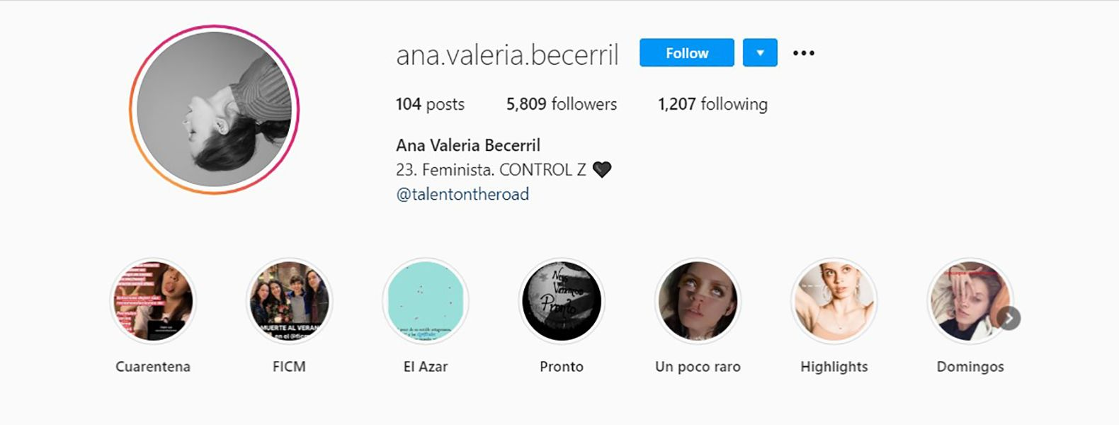 Instagram Bio of Ana Valeria Becerril Describing Herself as a Feminist