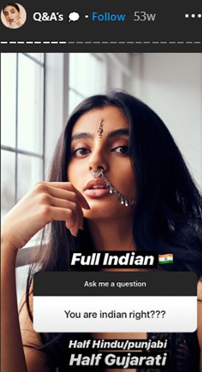 Nikita Chadha Talking About her Ethnicity in Instastory