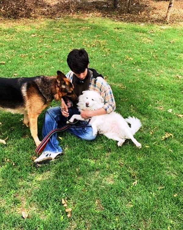 Pulkit Makol With His Pet Dogs, Maggie and Chilli