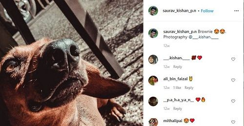 Saurav Kishan's Pet Dog
