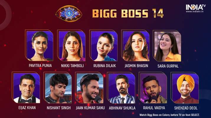 Bigg Boss 14 Contestantss