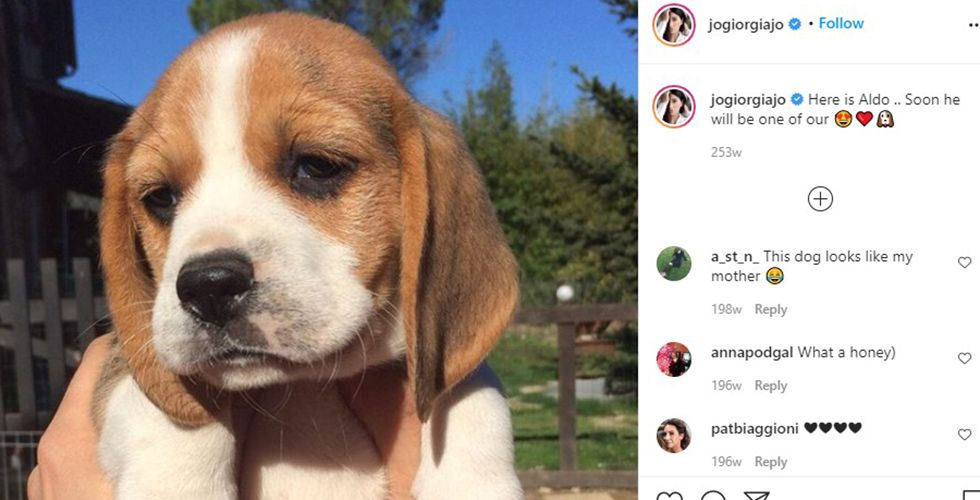 Giorgia Gabriele Talking About her Pet on her Instagram Account