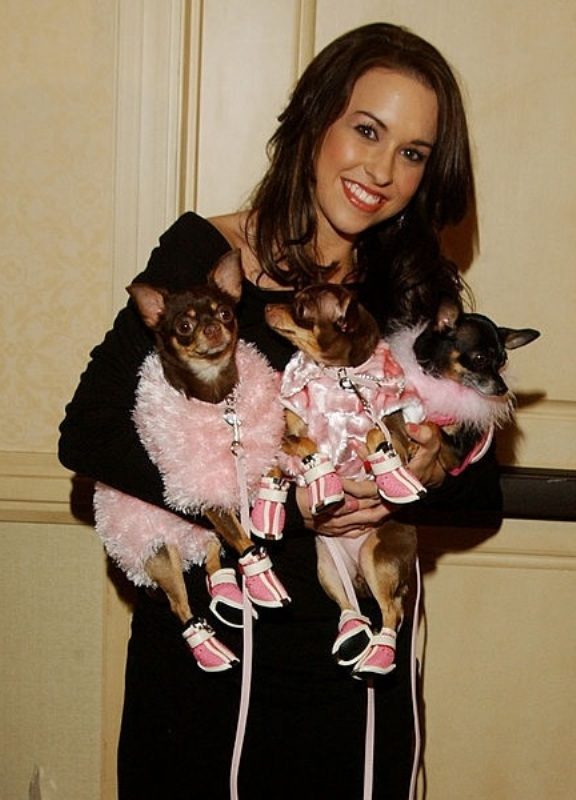 Lacey Chabert with her Chihuahuas