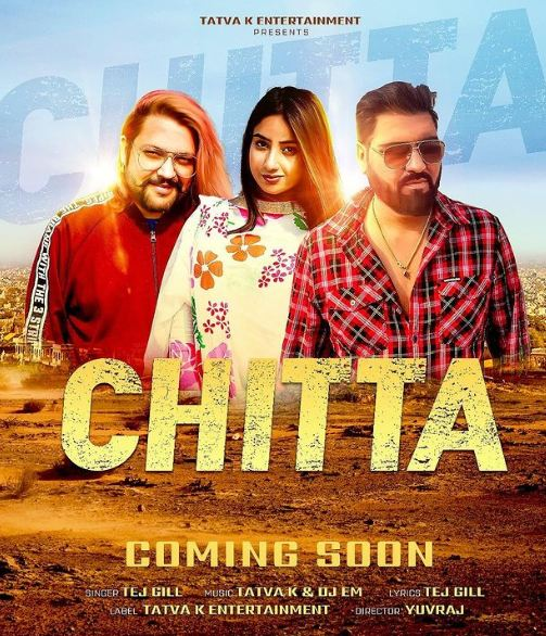 Anicka on the cover art of Chitta song