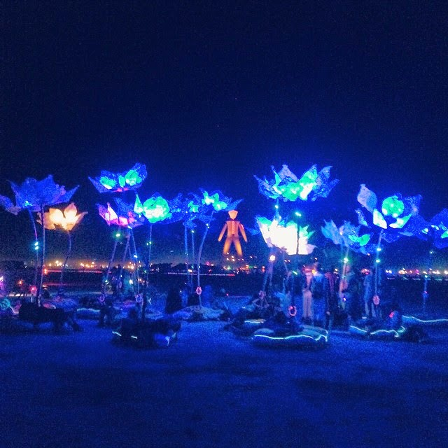 The 'Pulse and Bloom' project installed by Shilo Shiv Suleman at Burning Man Festival (2014)
